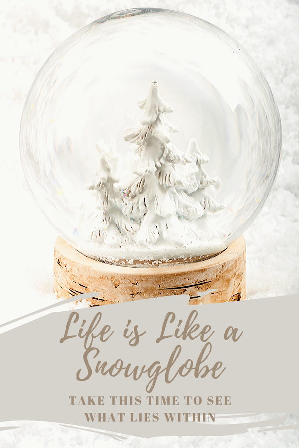 Life is like a snowglobe. In current times, we've been forced to stop. Stop the whirring of activity. Quiet the storm of our lives. The snow is settling, and we can see what's inside. Regardless of whether you wanted to or not! What do you see when the snow settles? There has never been a better time than now to look within! Click through to learn more! #anxiety #stress #lifecoach